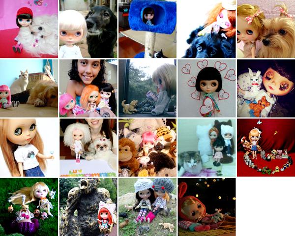 Concurso Fotográfico Amamos Blythes & Animais: Tema 6 - Amamos Blythes & Animais